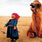laughing-camel-and-little-girl